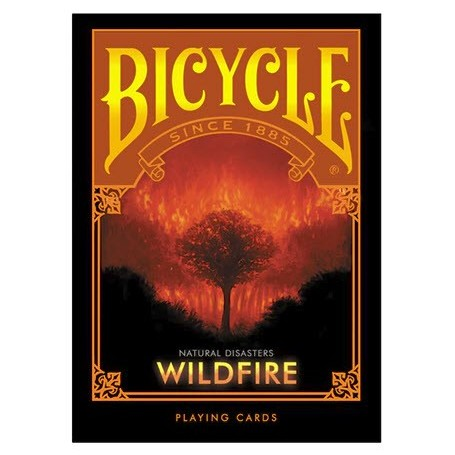 Natural Disasters: Wildfire